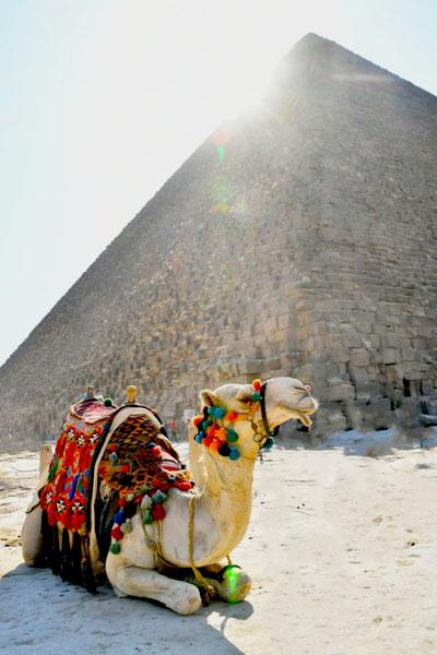 egipto-fundo-v-02