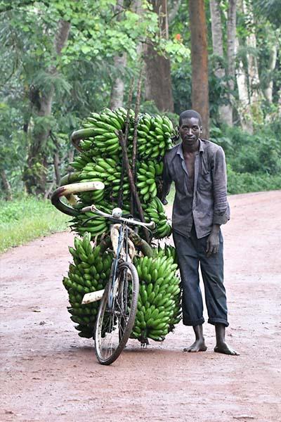uganda-verticais03
